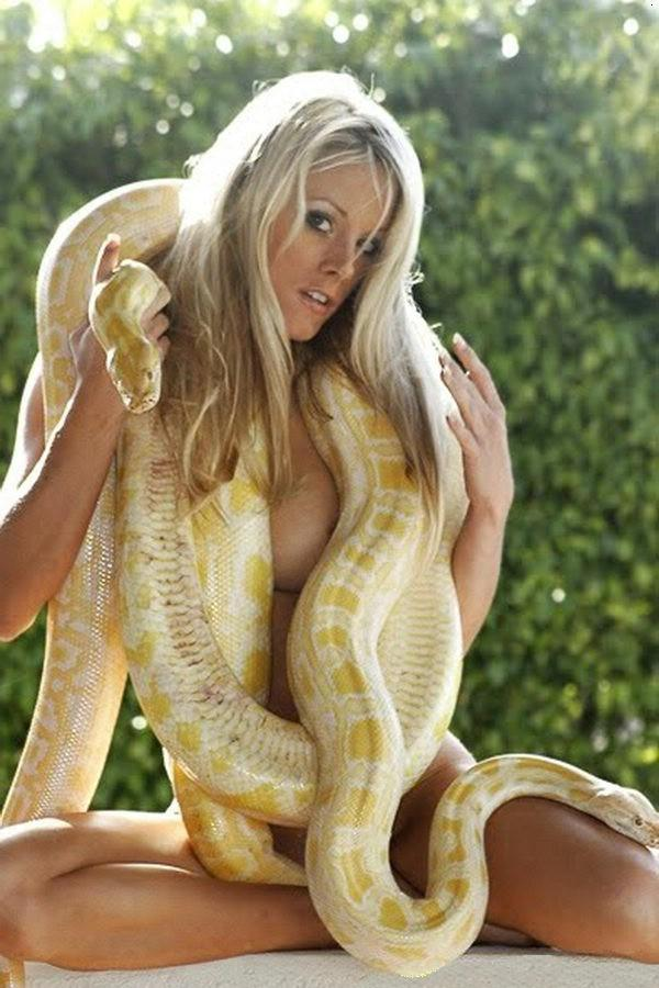 Good Burmese python with nude girl think