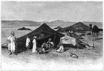 arab goat f*ckers in the desert