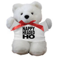 nap ho teddy bear