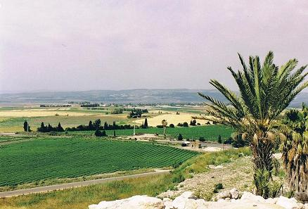 The fertile Jezreel Valley