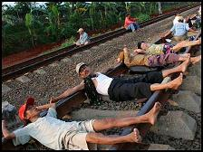 Indonesians believe rail therapy is effective in fighting gout, rheumatism, hypertension, high cholesterol, and obesity.