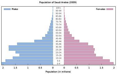Saudi Arabia Demographics Chart