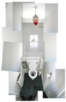 toilet montage