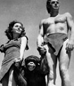 Tarzan and Jane and cheetah the chimpanzee