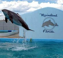 marineland florida