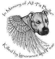 angel pit bull :(