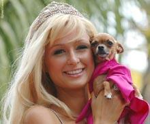 Paris Hilton and her Chihuahua Tinkerbell