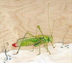 hogan_The Ants And The Grasshopper