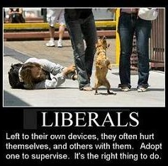 adopt a liberal
