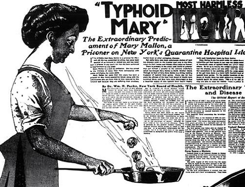 Research on typhoid fever