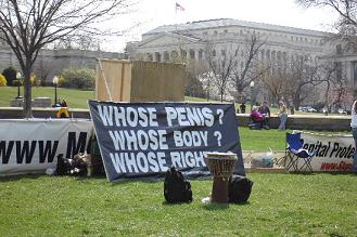 a protest against circumcision going on on the lawn of the capitol