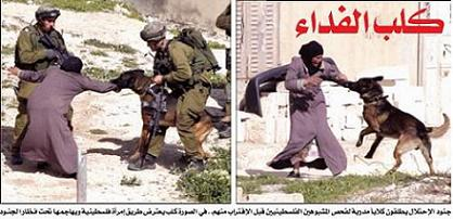 HOAX: Israeli soldiers unleash a dog on an elderly Palestinian woman