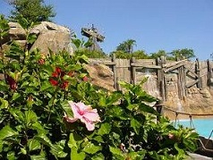 Flowers in the foreground with Mt. Mayday in the background at Walt Disney World's Typhoon Lagoon water park.